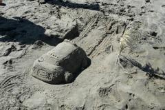 winning sandcastle